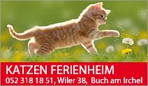 Katzen Ferienheim im Wiler
