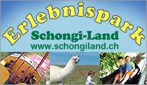Schongi-Land AG