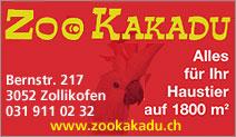 Zoo Kakadu Zollikofen