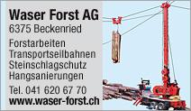 Waser Forst AG