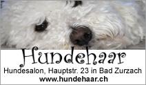 Salon Hundehaar