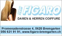 Coiffeur Figaro Bremgarten