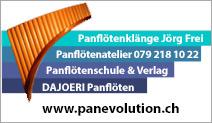 Panevolution GmbH