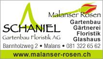 Schaniel Gartenbau
