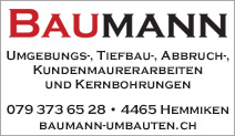 Alex Baumann – Umbauten und Renovationen