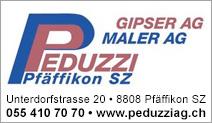 Peduzzi Gipser AG