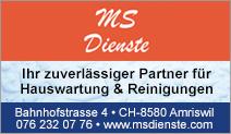 MS Dienste