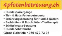 4pfotenbetreuung.ch