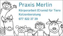 Praxis Merlin