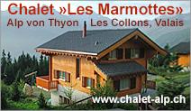 Chalet «Les Marmottes»