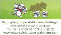 Naturspielgruppe Waldmäuse Gelfingen