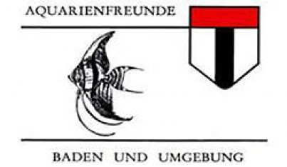 Aquarienfreunde Baden und Umgebung